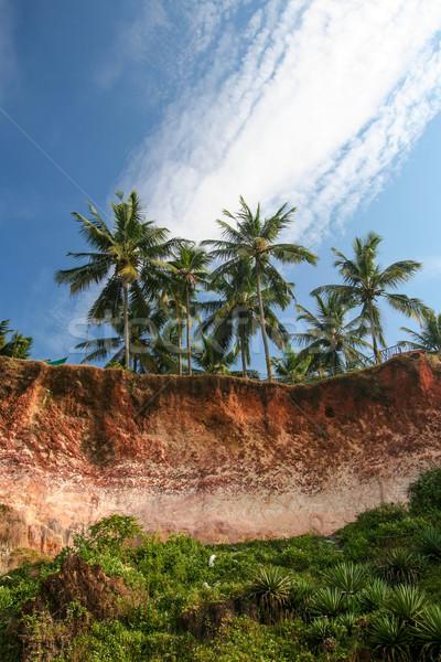 Stok fotoğraf: Plaj · Hindistan · güney · gökyüzü · ağaç