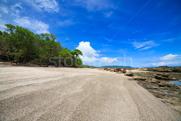 熱帯ビーチ サンタクロース コスタリカ 森林 自然 木 ストックフォト © Juhku