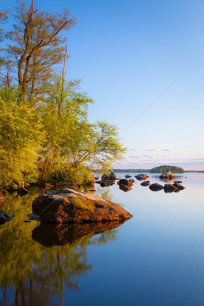 Calm lakeside at sunset Stock photo © Juhku