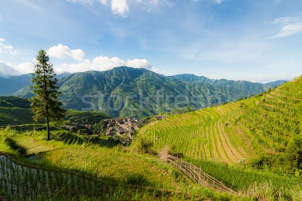ストックフォト: 風景 · 写真 · コメ · 村 · 中国