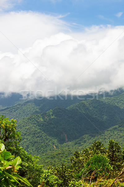 Forêt tropicale paysage Costa Rica vue ciel nature Photo stock © Juhku