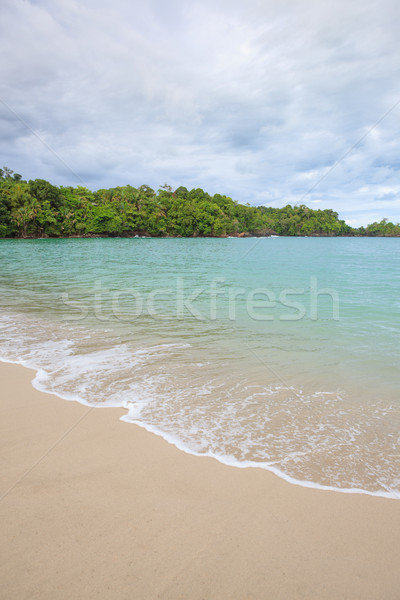 Beach Manuel Antonio Costa Rica Stock photo © Juhku