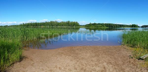 Mały piasku plaży lata Finlandia ukryty Zdjęcia stock © Juhku
