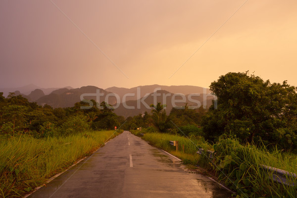 Road to gunung mulu national park Stock photo © Juhku
