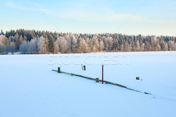 冬 湖 風景 フィンランド 森林 ストックフォト © Juhku