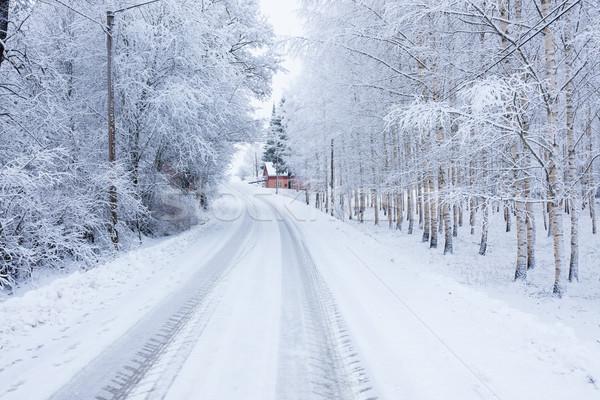 Piccolo strada inverno campagna cielo panorama Foto d'archivio © Juhku