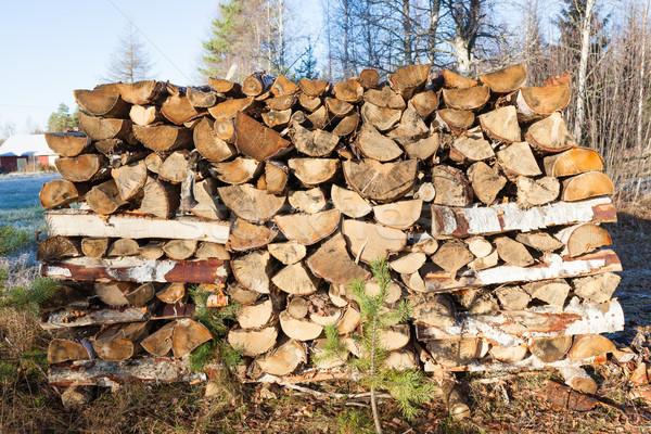 Drewno opałowe na zewnątrz lata kabiny lasu Zdjęcia stock © Juhku