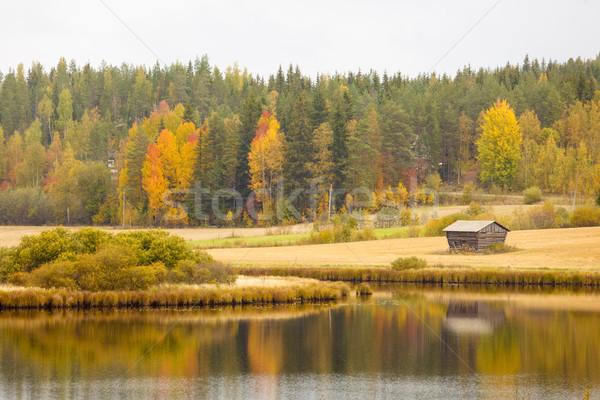 Beautiful autumn landscape Stock photo © Juhku