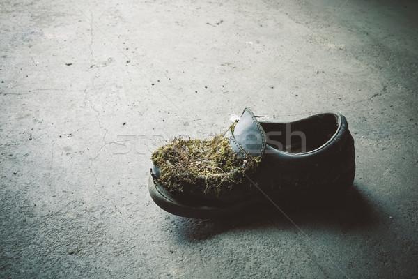 Foto stock: Abandonado · sapato · concreto · piso · moda · preto