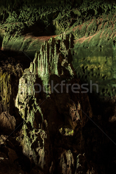 Grot park borneo Maleisië muur natuur Stockfoto © Juhku