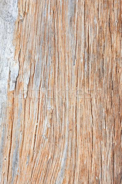 Szary driftwood drzewo drewna tle Zdjęcia stock © Juhku