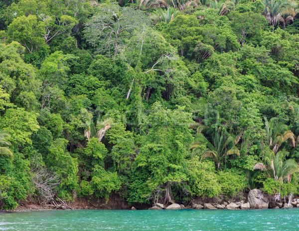 Foresta pluviale shore Costarica Hill Ocean spiaggia Foto d'archivio © Juhku