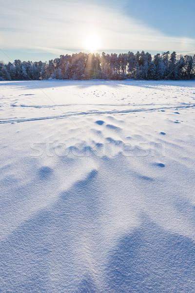Congelado lago nieve invierno día sol Foto stock © Juhku