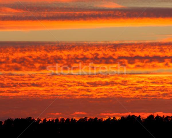 Ardente rosso tramonto nubi vibrante cielo Foto d'archivio © Juhku