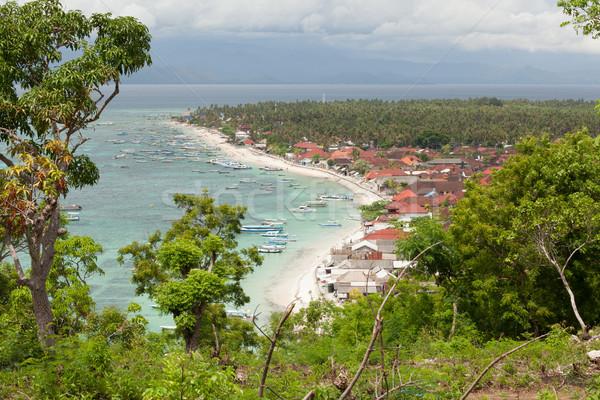 Falu Bali Indonézia tengerpart fa természet Stock fotó © Juhku