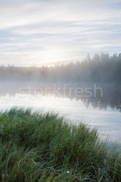 Mistig ochtend bos vijver landschap Finland Stockfoto © Juhku