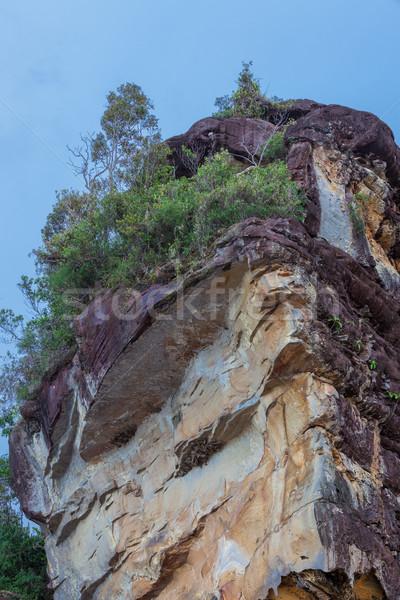美しい 砂岩 岩 ビーチ 公園 マレーシア ストックフォト © Juhku