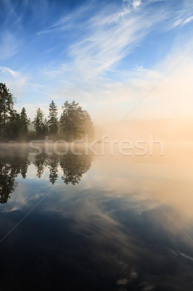 Forest at lakeside at foggy morning Stock photo © Juhku