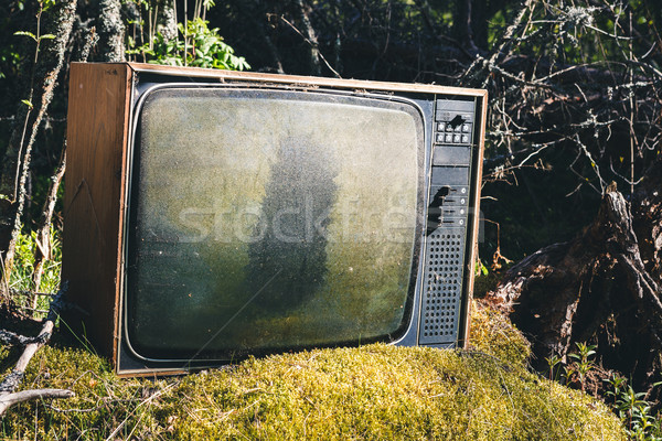 Old analog television in forest Stock photo © Juhku
