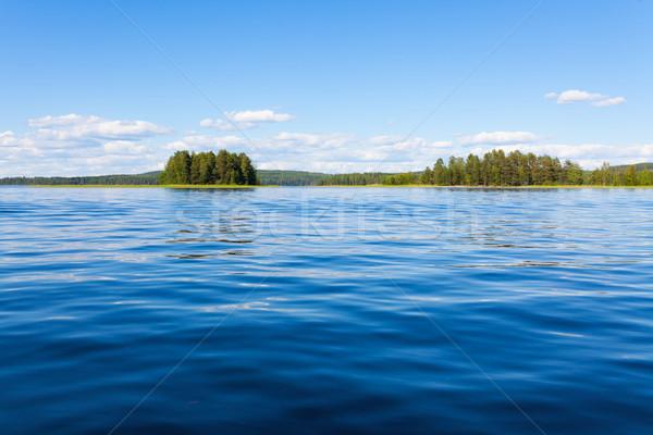 フィンランド 湖 夏 森林 木 青 ストックフォト © Juhku