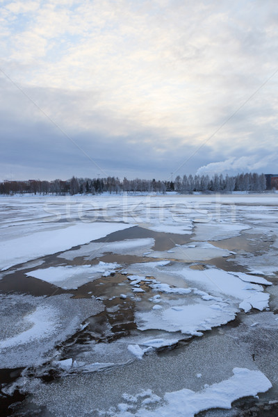 Thin ice on a lake at sunrise Stock photo © Juhku