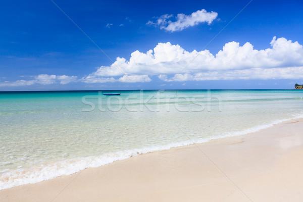 Longtemps sable plage pointe eau nature Photo stock © Juhku