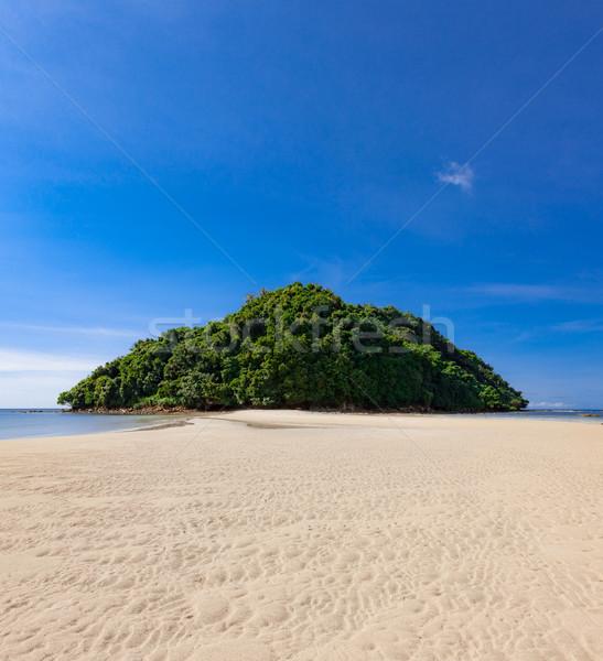 Tropischen Wald Abschluss Paradies Sand Strand Stock foto © Juhku