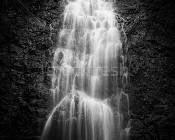 Montezuma waterfall in Costa Rica Stock photo © Juhku