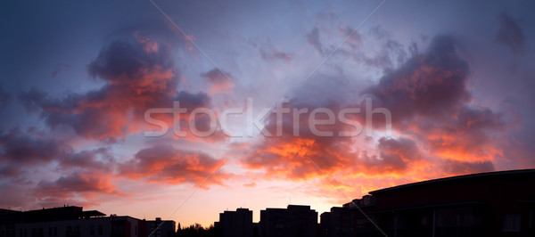 Sunset panorama sky and vibrant clouds Stock photo © Juhku