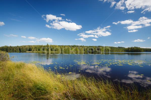 晴れた 湖 風景 フィンランド 空 ストックフォト © Juhku