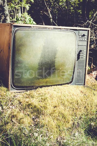 Vieux analogique télévision forêt abandonné nature Photo stock © Juhku