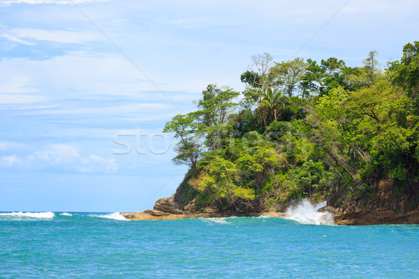 Ocean and forest cliff Manuel Antonio Costa Rica Stock photo © Juhku