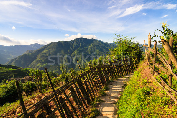 Chinese mountains and stone pathway Stock photo © Juhku