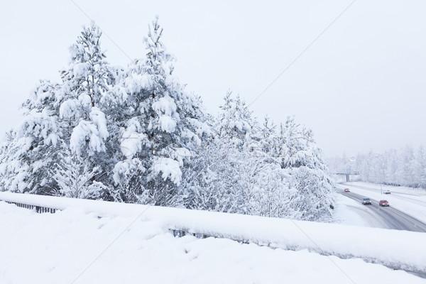 снега пейзаж дороги зима облака лес Сток-фото © Juhku