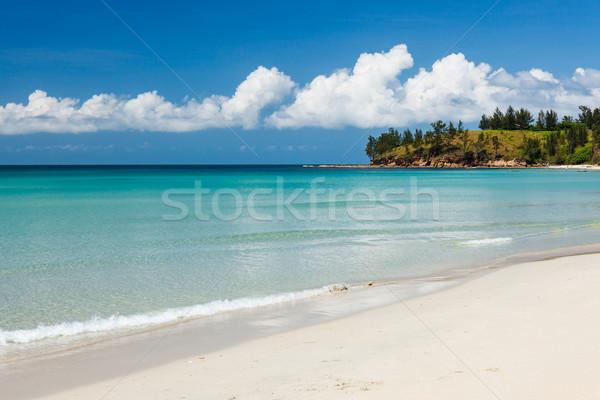 Longo areia praia ponta natureza verão Foto stock © Juhku