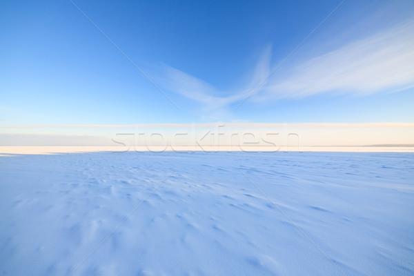 Frozen lake scape and blue sky Stock photo © Juhku