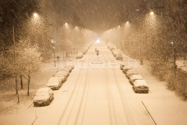 Lots of snowfall and empty road Stock photo © Juhku