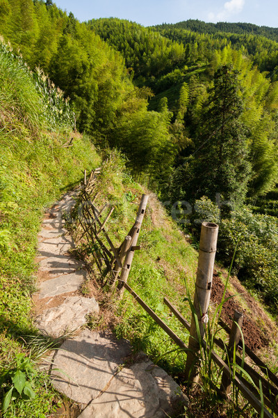 китайский гор каменные путь забор Сток-фото © Juhku
