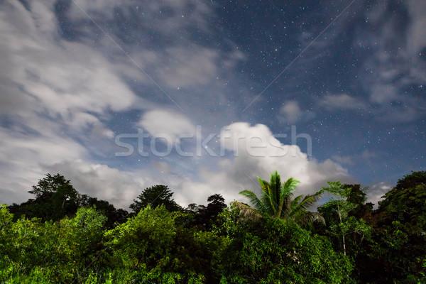 Esőerdő csillagos ég felhők holdfény Borneo Malajzia Stock fotó © Juhku