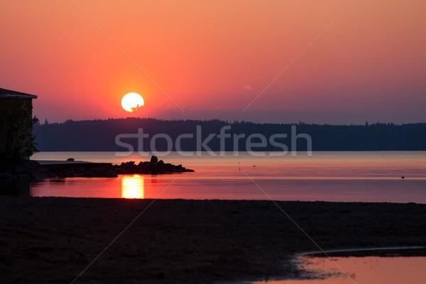 活気のある 日没 シルエット ビーチ 遅い ストックフォト © Juhku