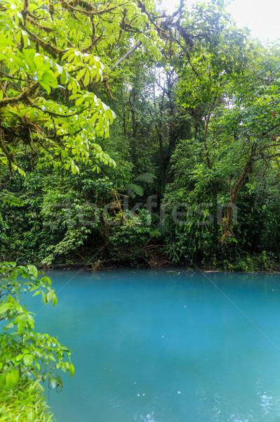 Rio celeste river at foggy day Stock photo © Juhku