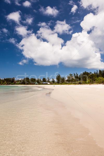 長い 砂 ビーチ 先端 海 背景 ストックフォト © Juhku