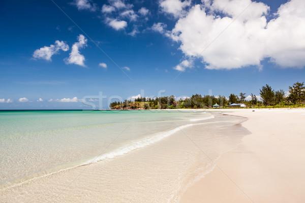 Long sand beach at tip of boreno Stock photo © Juhku
