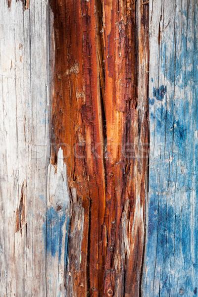 Decayed wood Stock photo © Juhku