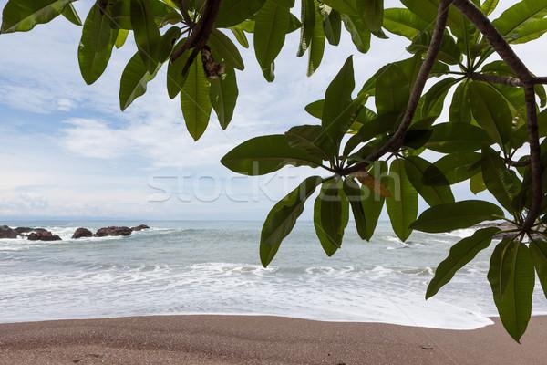 Playa paisaje Costa Rica cielo agua Foto stock © Juhku