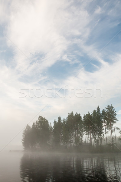 Forest at lakeside at foggy morning Stock photo © Juhku