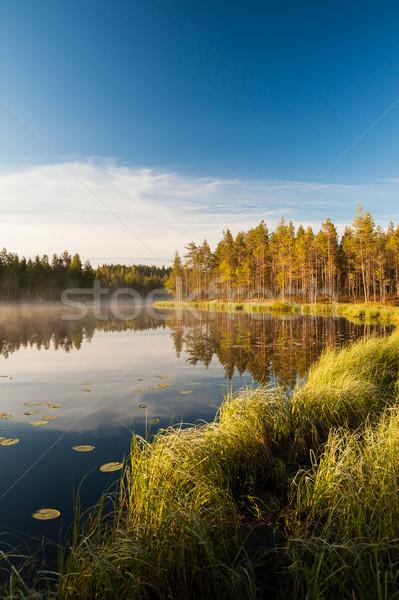 Derűs reggel erdő tavacska Finnország égbolt Stock fotó © Juhku