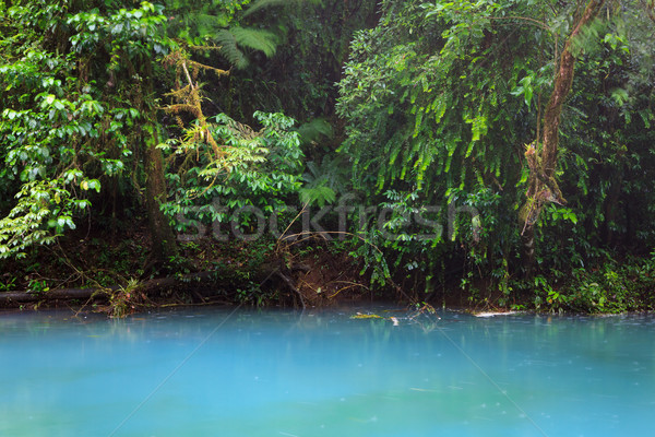 Rio celeste and vegetation Stock photo © Juhku