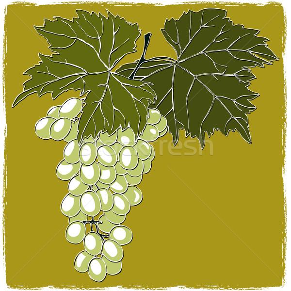 Winogron pozostawia żywności charakter liści Zdjęcia stock © jul-and