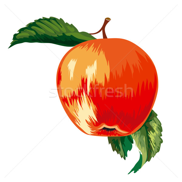 Czerwony dojrzały jabłko pozostawia żywności Zdjęcia stock © jul-and